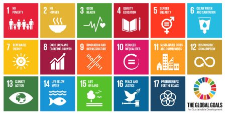 Figure 1. Sustainable Development Goals