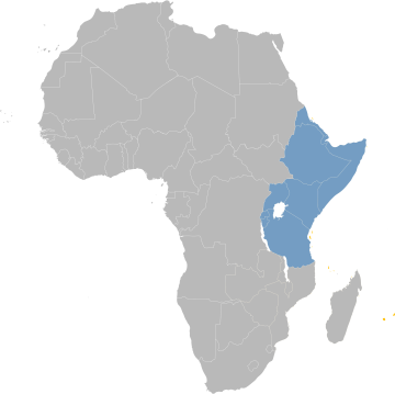 East Africa as defined by IRENA and used in this study, Sudan, South Sudan, Eritrea, Djibouti, Ethiopia, Somalia, Uganda, Kenya, Rwanda, Burundi, Tanzania